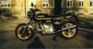 Tiger våren 1981
